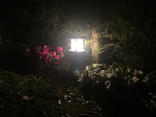Balizas led jardín